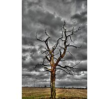Stormy Soul. Photographic Print