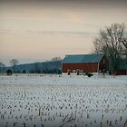 Wisconsin Winter by Lynne Prestebak