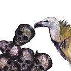 vulture & skulls by patricia shrigley