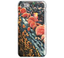 Orange Turkeytails iPhone Case/Skin