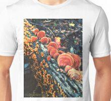 Orange Turkeytails Unisex T-Shirt