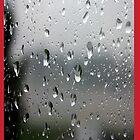 Rain glass by densestcoronet7