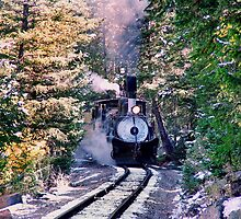 Colorado & Southern #9 steams up on the Georgetown Loop  by Ken Smith