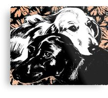 Dog Love Graphic ~ black, white and gold  Metal Print