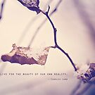 Live for the Beauty by KBritt