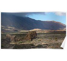 Tenerife National Park Poster