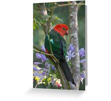 Parakeet Greeting Card