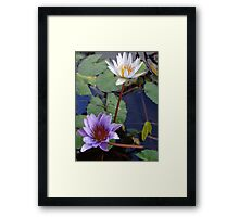 Water Flowers - Flores Del Agua Framed Print