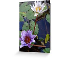 Water Flowers - Flores Del Agua Greeting Card