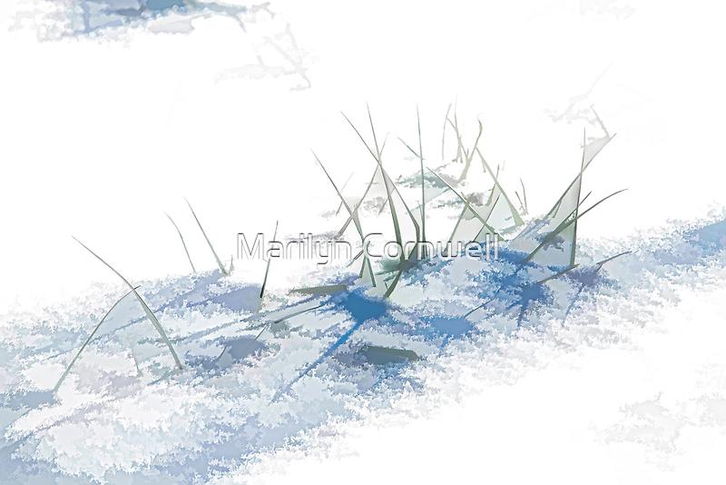 Interpretations of Snow - I by Marilyn Cornwell