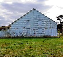 Barn at Historic Pierce Ranch by Barbara Wyeth