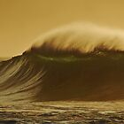Golden Wave by Paul Laubach