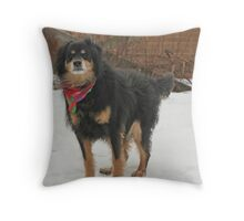 Mssr. Helmoots Favorite Scarf Throw Pillow