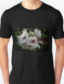 Filtered Light on Spring Blossoms T-Shirt