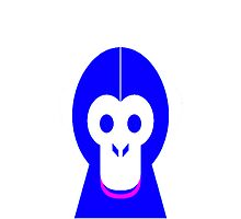 AnimalKingdom - Cheeky Monkey! Photographic Print