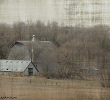 Farmstead by RenieRutten