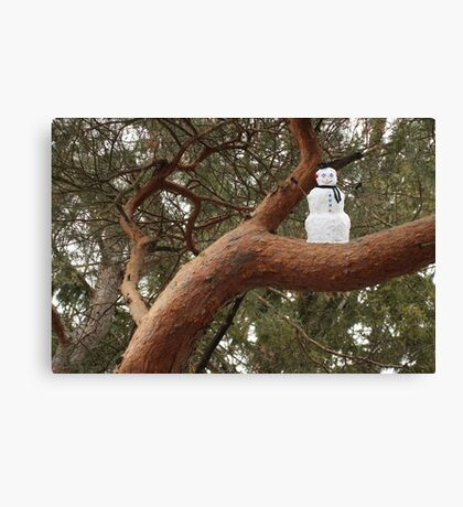 Snowman Climbed Tree Canvas Print
