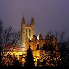 View From The Garden - Canterbury Cathedral 2 by rsangsterkelly