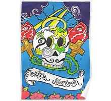 Gracia Asombrosa(amazing grace) Poster