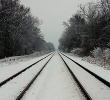 Tracks in Snow by Daniel Owens
