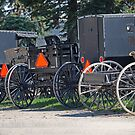Parked Buggies at the Amish Auction by Brendon Perkins