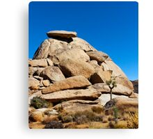 Cap Rock Canvas Print