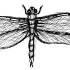 dragonfly by vampvamp