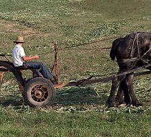 Cutting the Fields by Brendon Perkins