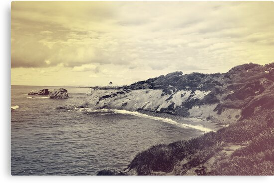 Crystal Cove by Kristin Kenney