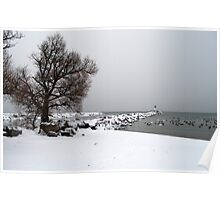 The Port Darlington Lighthouse In The Winter Poster
