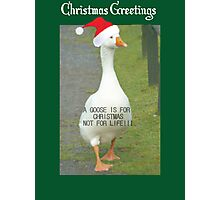 A GOOSE IS FOR CHRISTMAS, NOT FOR LIFE Photographic Print