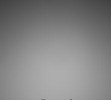 Sentinels by Craig Jennings