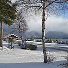 Winter in Manapouri by Linda Cutche