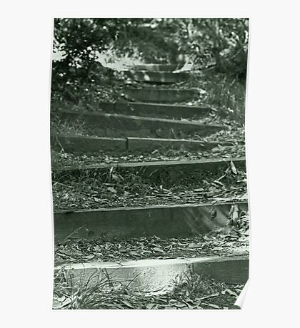 Bush stairs Poster