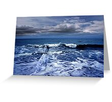 Mister Kallinsky and the sea Greeting Card