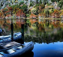Canoes And Autumn by Carolyn  Fletcher