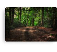 Great Heads Wood Roundhay Park (HDR) Canvas Print