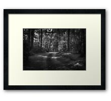 Great Heads Wood Roundhay Park B&W (HDR) Framed Print