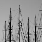 Masts by Dan Edwards