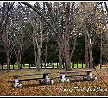 Emery Park, NY by Wildflower77