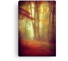 encounters Canvas Print