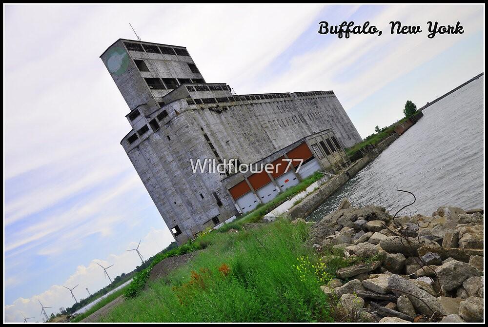 Grain Mill on Lake Erie. Buffalo, NY by Wildflower77