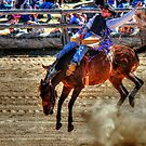Harvey Dickson's rodeo 2012, Boyup Brook WA by michelle robertson