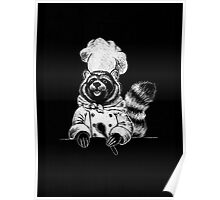 The Raccoonbear Diet Poster