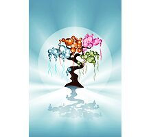 The Four Seasons Bubble Tree Photographic Print