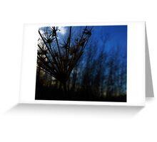 Blue Dusk Greeting Card
