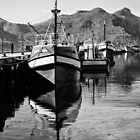 Boats at the dock by Dan Edwards