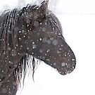 Polka-dotted horse by Jim Cumming