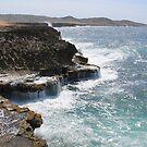 Aruba Coastline by jritucci