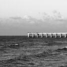 b&w navarre beach, FL by cmpotts